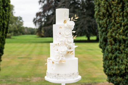 The Hawkhills Weddings - Where the Ribbon Ends Wedding Cake